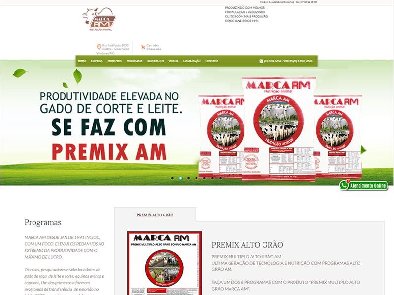 09025ef57 criacao de loja virtual marca am - INDEX INTERACTIVE